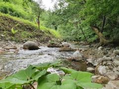 Giornata in Natura a Telese e Parco del Grassano Domenica 26 Settembre ore 10:00